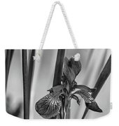 The Mystery Of Spring 2 Bw Weekender Tote Bag