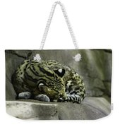 The Napping Rock Weekender Tote Bag