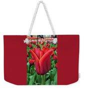 The Nederlands Tulip Festival 1 Weekender Tote Bag