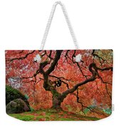 The Old Japanese Maple Tree In Autumn Weekender Tote Bag