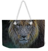 The Old Lion Weekender Tote Bag