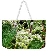 The Olde Grapevine Weekender Tote Bag