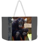 The Orangutan Weekender Tote Bag