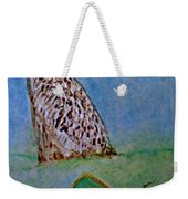The Owl And The Butterfly Weekender Tote Bag