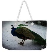 The Peacock In The Royal Garden In Winter Weekender Tote Bag