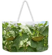 The Perfect Twin Weekender Tote Bag