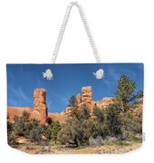 The Pillars Weekender Tote Bag