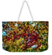 The Rainbow Tree Weekender Tote Bag