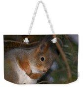 The Red Squirrel 4 Weekender Tote Bag