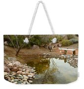 The Reflection By The Bench Weekender Tote Bag