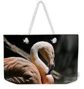 The Sacred Old Flamingoes Weekender Tote Bag