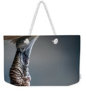 The Seagulls Knee  Weekender Tote Bag by Bob Orsillo
