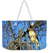 The Search Red Tail Hawk Art Weekender Tote Bag