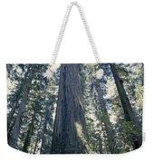 The Shenandoah National Forest Weekender Tote Bag