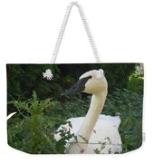 The Silent Trumpet Weekender Tote Bag