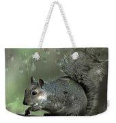 The Squirrel Weekender Tote Bag