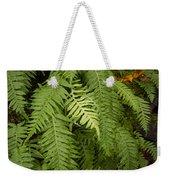 The Standout Fern Weekender Tote Bag