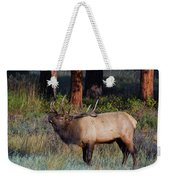 The Stare Weekender Tote Bag by John De Bord