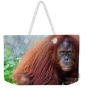 The Staring Contest Weekender Tote Bag