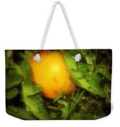The Sun Is Sleeping In The Garden Weekender Tote Bag