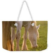 The Sunlight Caught In The Horse Tail Weekender Tote Bag