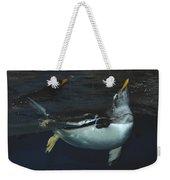 The Swim Weekender Tote Bag
