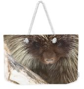 The Tender Side Of Porcupine Weekender Tote Bag