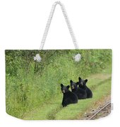 The Three Little Abc Bears Weekender Tote Bag