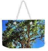The Turtleback Tree Weekender Tote Bag by Lorraine Devon Wilke