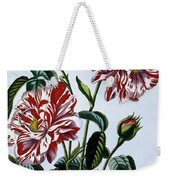 The Variegated Rose Of England Weekender Tote Bag