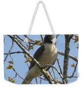 The View From Above V Weekender Tote Bag