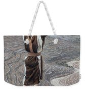 The Voice In The Desert Weekender Tote Bag