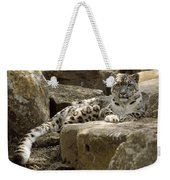 The Watchful Stare Of A Snow Leopard Weekender Tote Bag