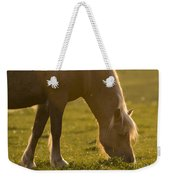 The Welsh Pony  Weekender Tote Bag