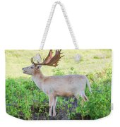 The White Stag 2 Weekender Tote Bag