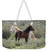 The Wild And Free  Weekender Tote Bag