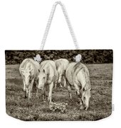 The Wild Horses Of Shannon County Mo 7r2_dsc1111_16-09-23 Weekender Tote Bag