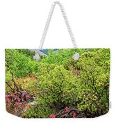 The Wildflowers Of Lundy Canyon Weekender Tote Bag
