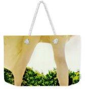 Fanny Weekender Tote Bag
