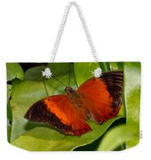 The Wizard Butterfly Weekender Tote Bag