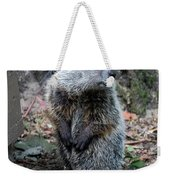 The Woodchuck Has To Pee Weekender Tote Bag