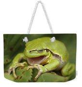 The Yawning Tree Frog Weekender Tote Bag