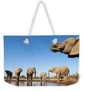 Thirsty Elephants Weekender Tote Bag