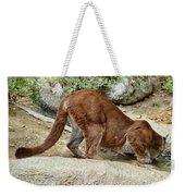 Thirsty Puma  Weekender Tote Bag