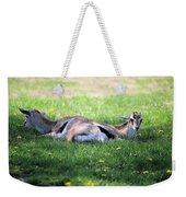 Thompson Gazelles Weekender Tote Bag