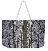 Thompson Lake Hdr  Weekender Tote Bag