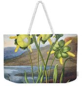 Thornton: Pitcher Plant Weekender Tote Bag
