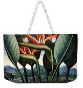 Thornton: Strelitzia Weekender Tote Bag