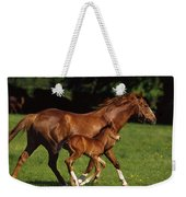 Thoroughbred Chestnut Mare & Foal Weekender Tote Bag