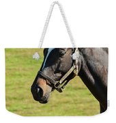 Thoroughbred Portrait Three Weekender Tote Bag